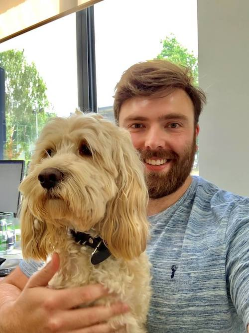 nobull comms- tom and office dog
