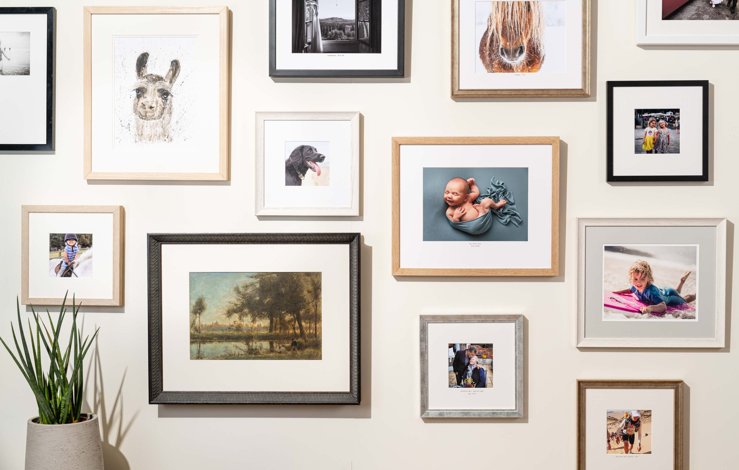 A picture of a wall covered in picture frames.