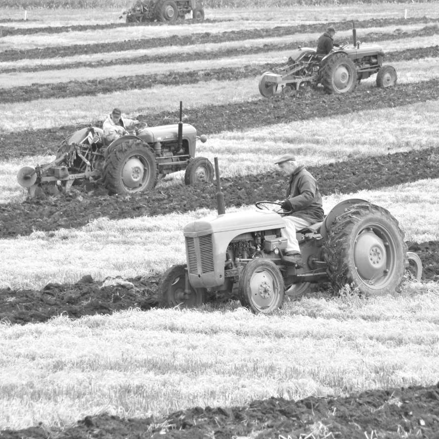 Black and White picture of some farmer on old period tractors ploughing a field