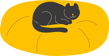 A cute black cat on a pillow bed