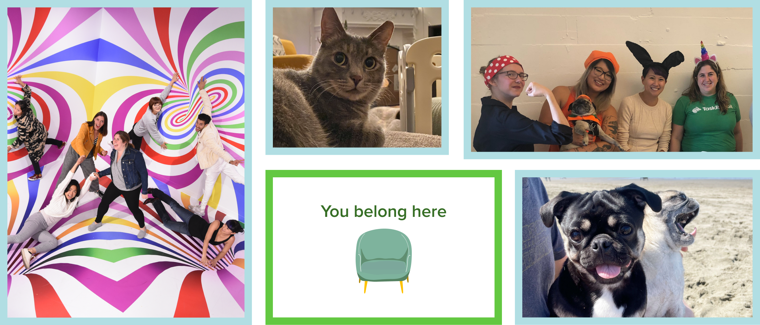 A collage of team photos: a photo of the team at a museum, a cat, two pugs, four team members in Halloween costumes, and a graphic with a chair that says you belong here