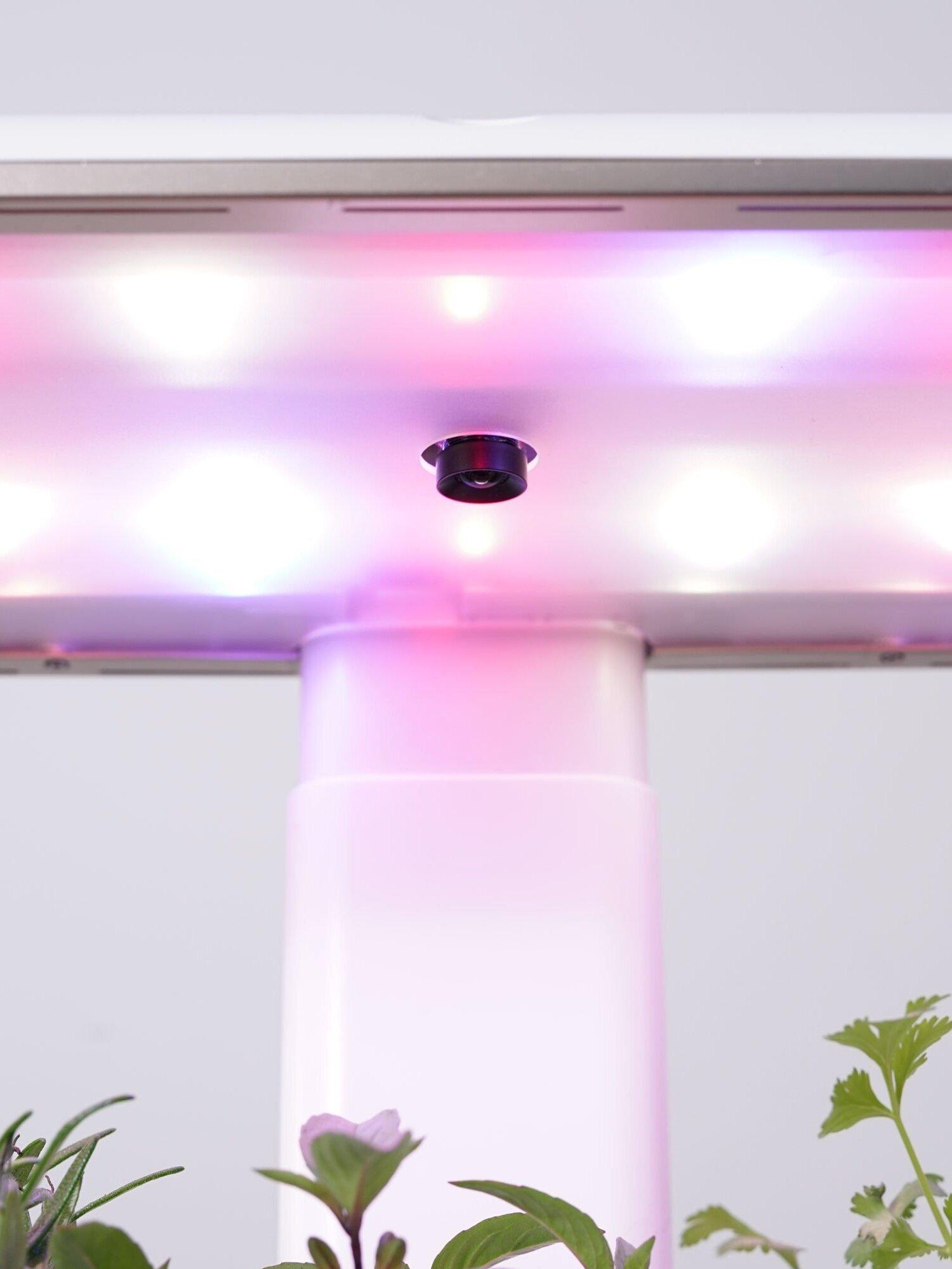 A closeup photo of the AVA Smart Garden camera module and lights.
