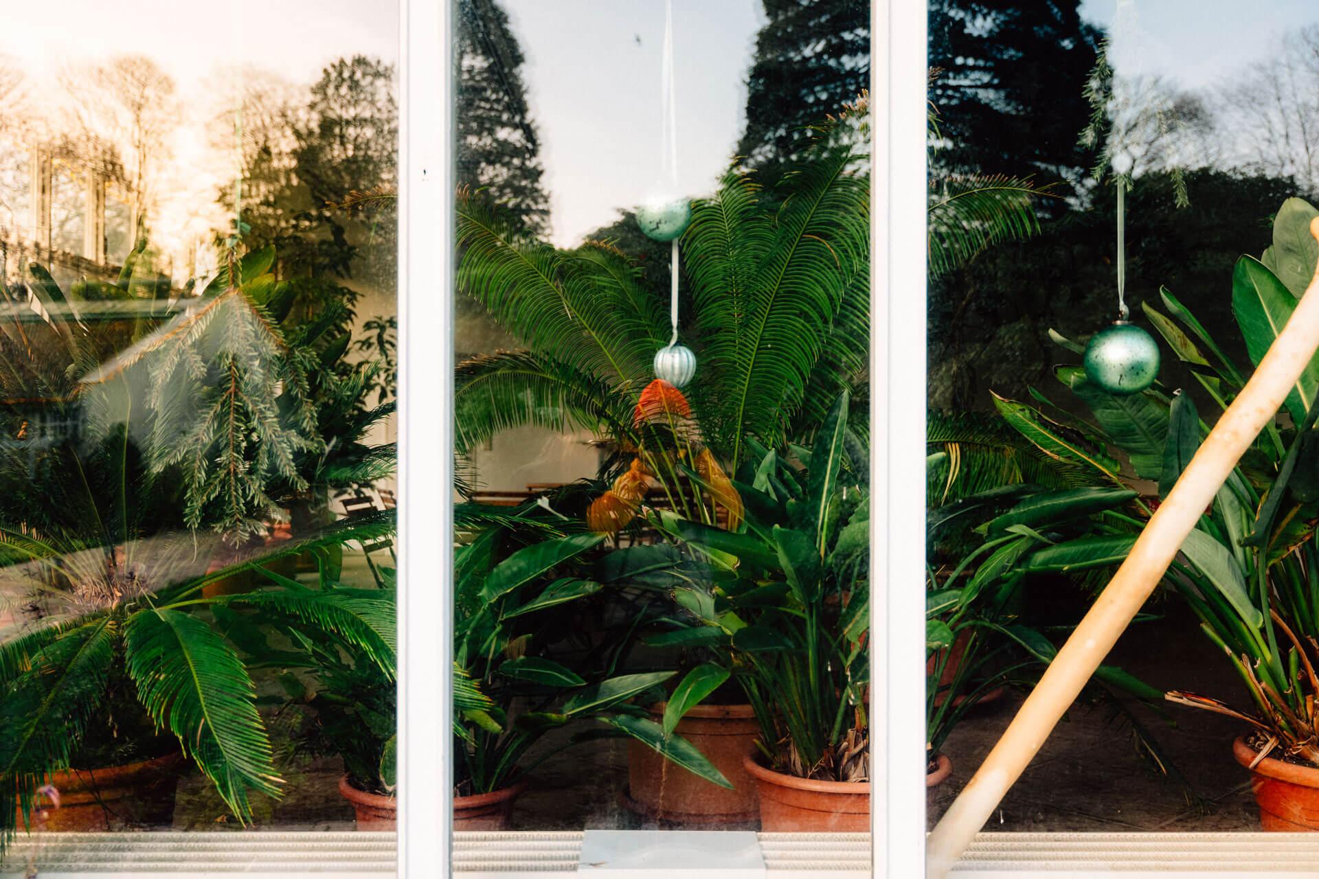 Selbstportrait vor Fensterfront in Oldenburg