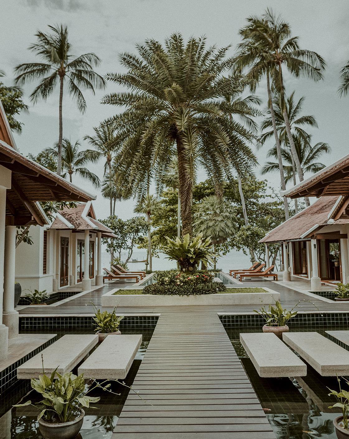 a tropical backyard with a pool