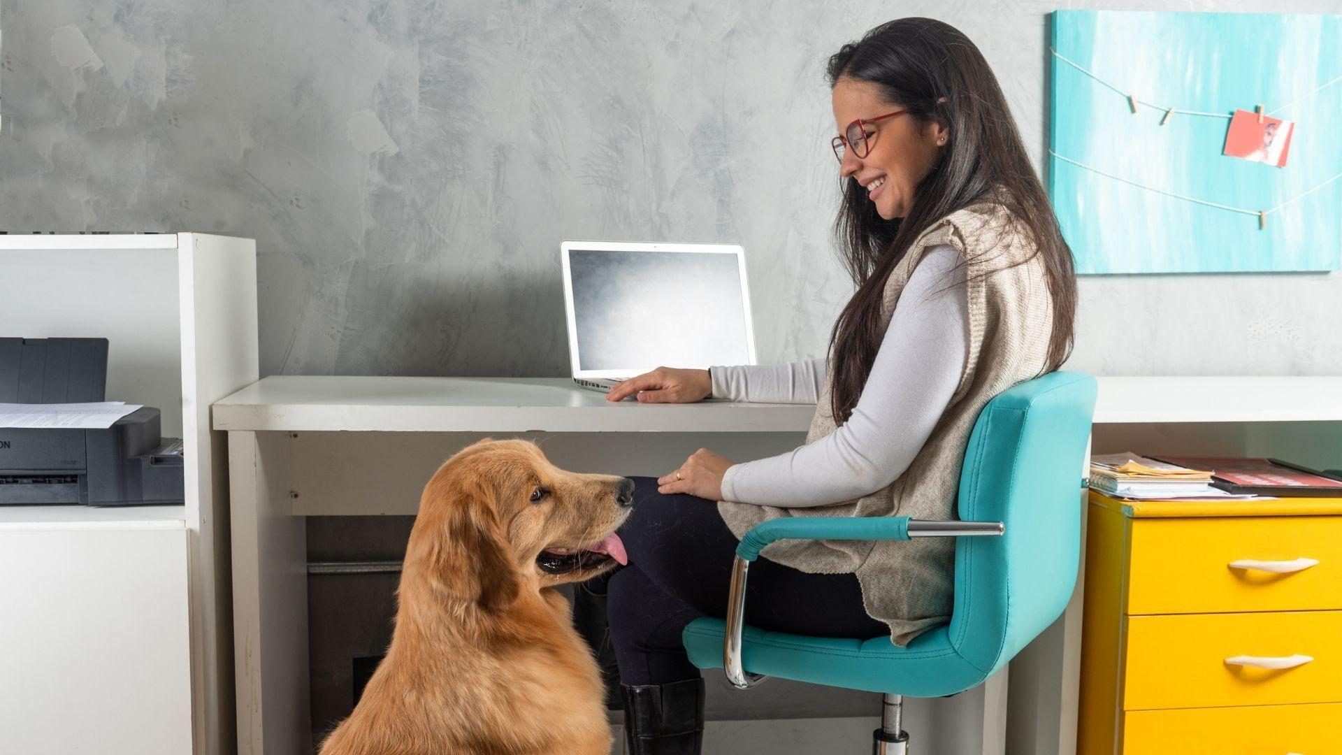 woman and esa dog at work