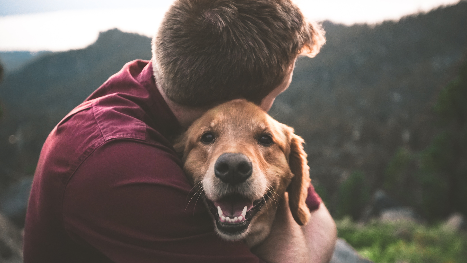Man hugging esa dog
