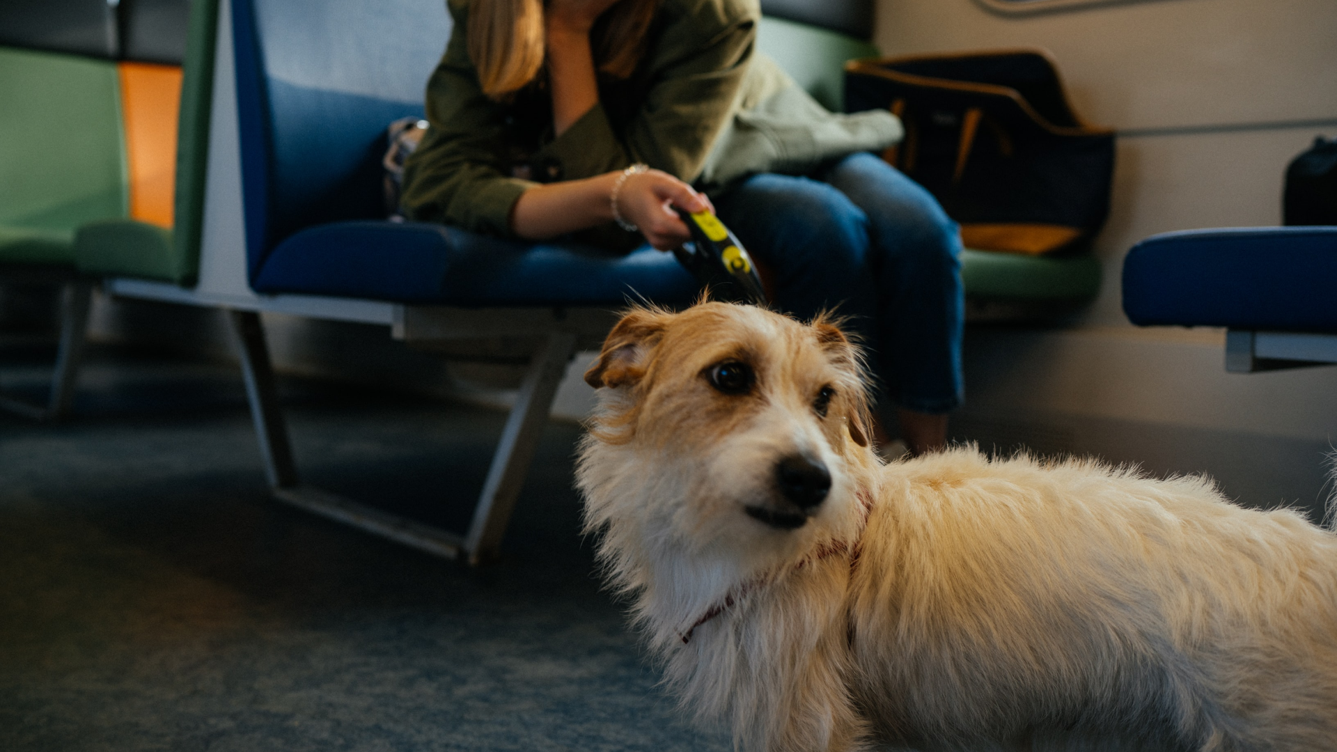 woman with dog at airport