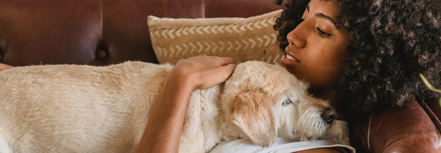 How Many Emotional Support Animals Can You Have?