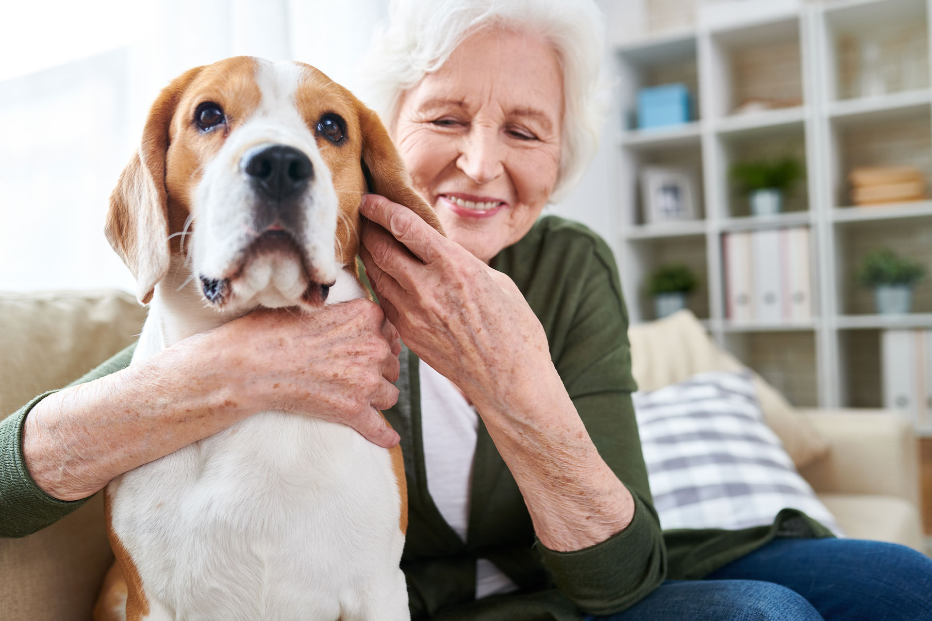 Emotional Support Animal (ESA) Laws Guide