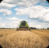 Farmer plowing crops in a field