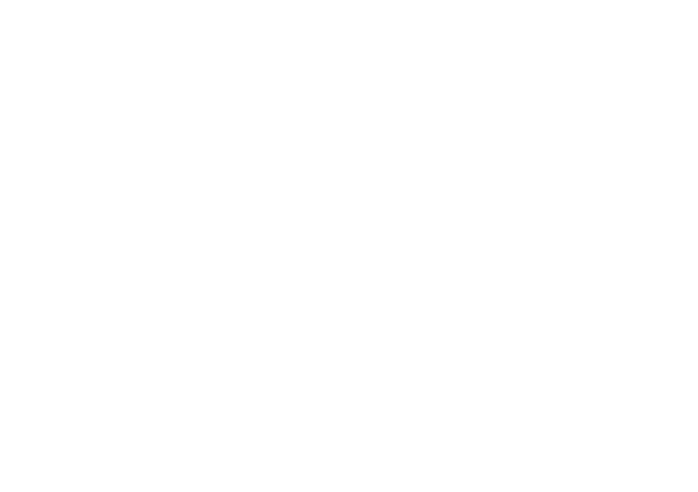 Partner logo, City of Turku