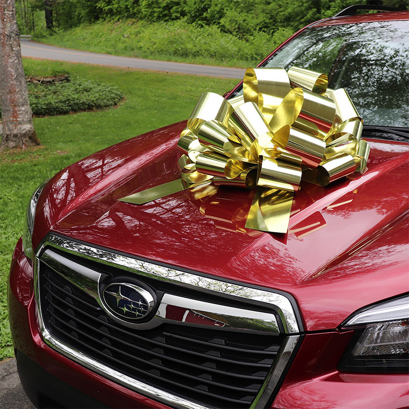 Giant Gift and Car Bow