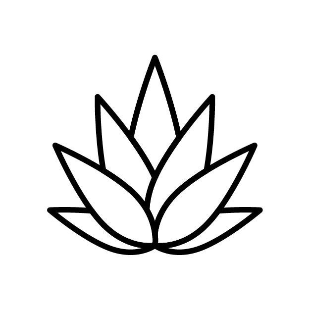 Simple graphic of agave used in Wheyward spirit