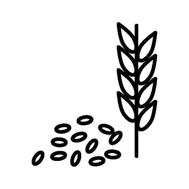 Simple graphic of grain used in Wheyward Spirit