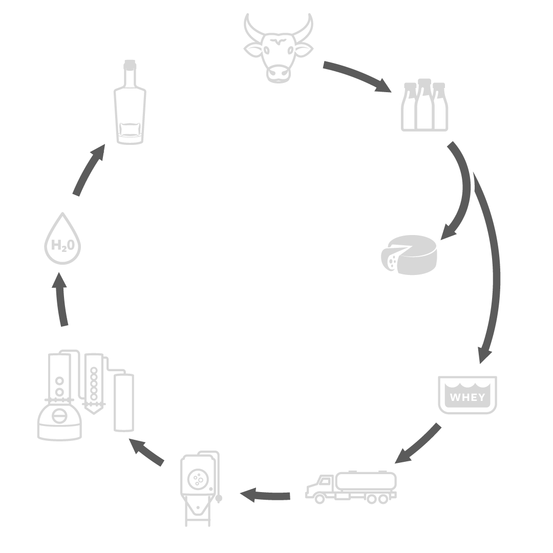 An infographic describing the process of how Wheyward Spirit is created