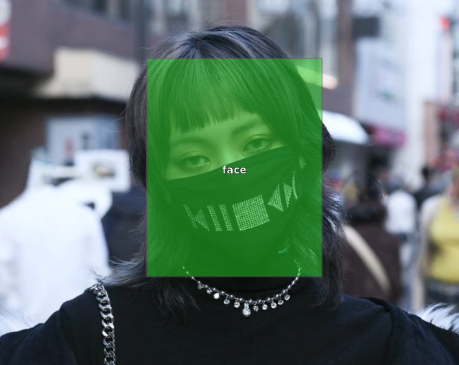 dataset face example.png