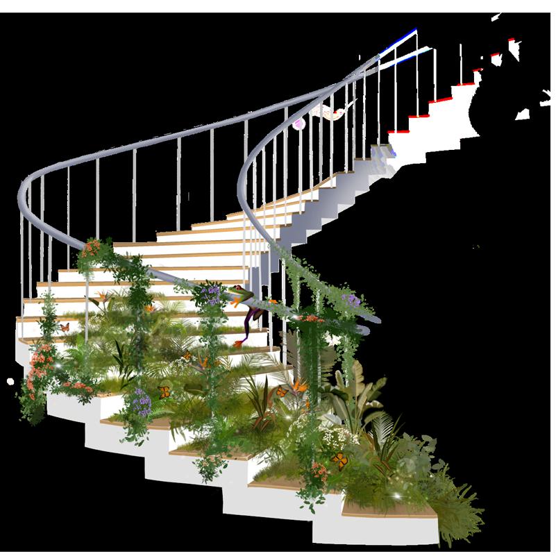 Oliva Step Care Model illustration