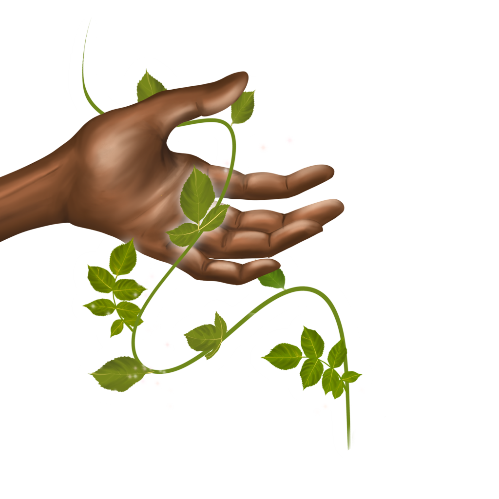 Illustration of a hand holding a plant.