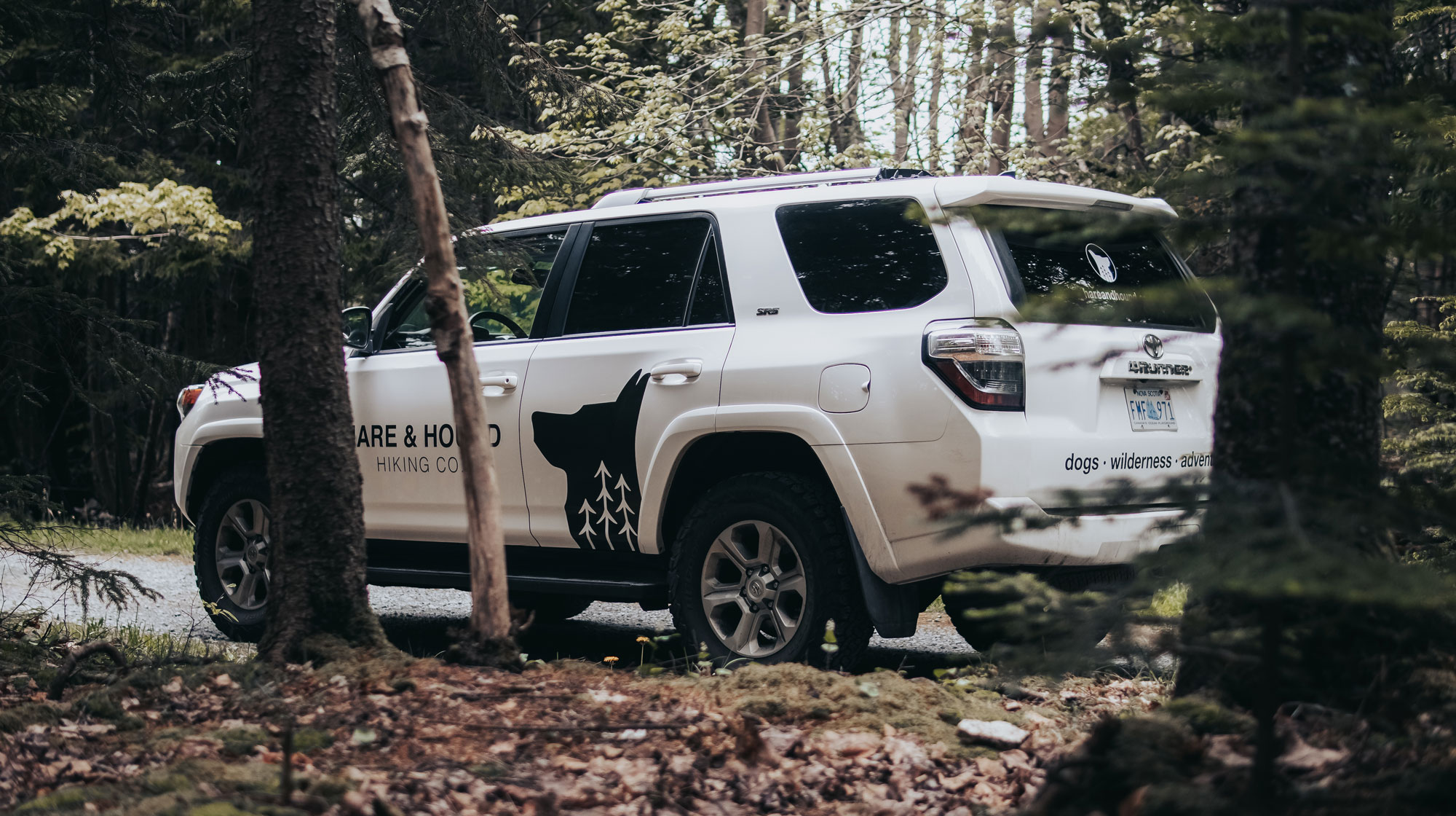 White 4 Runner with Hare & Hound decal