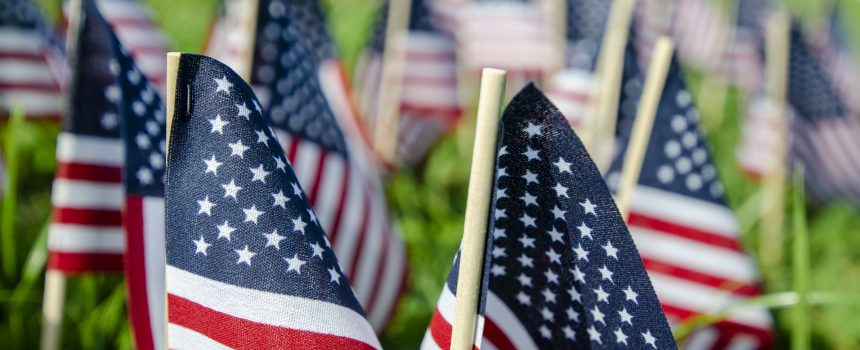 Veterans Day – building purpose through a shared mission
