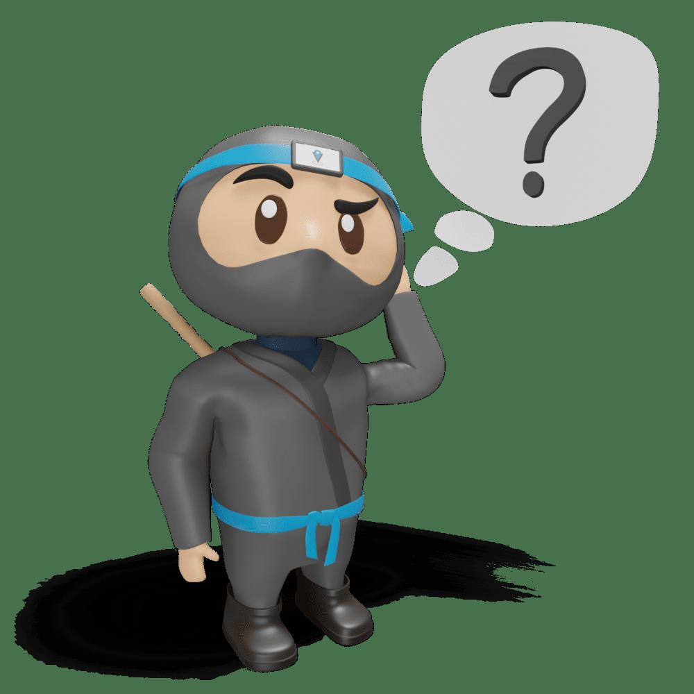 ninja question