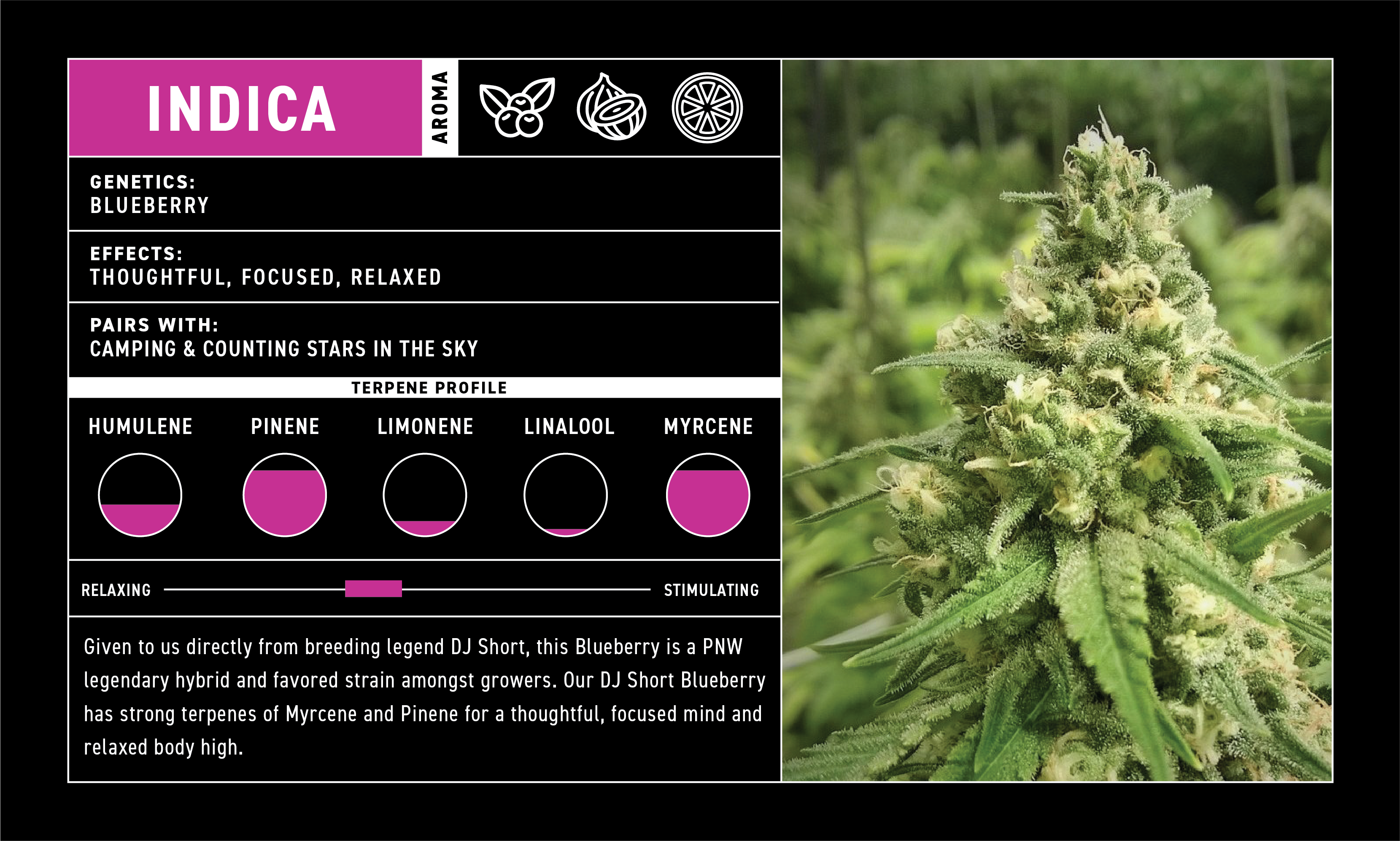 Images of different varieties of cannabis flavours on offer