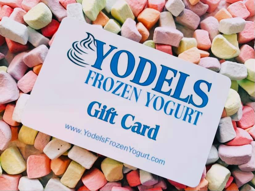 frozen yogurt Norton Shores