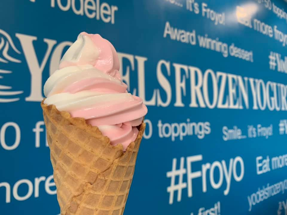 frozen yogurt North Muskegon MI