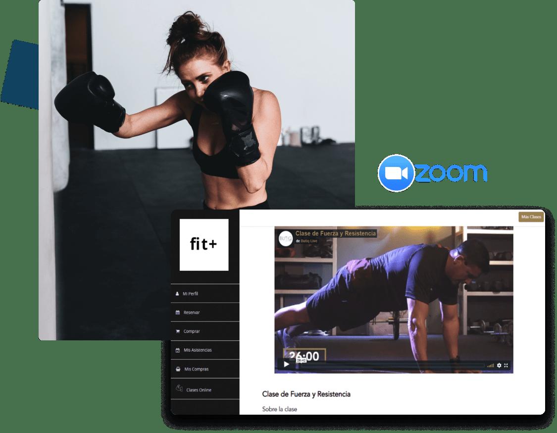 clases virtuales para centros de mma o artes marciales