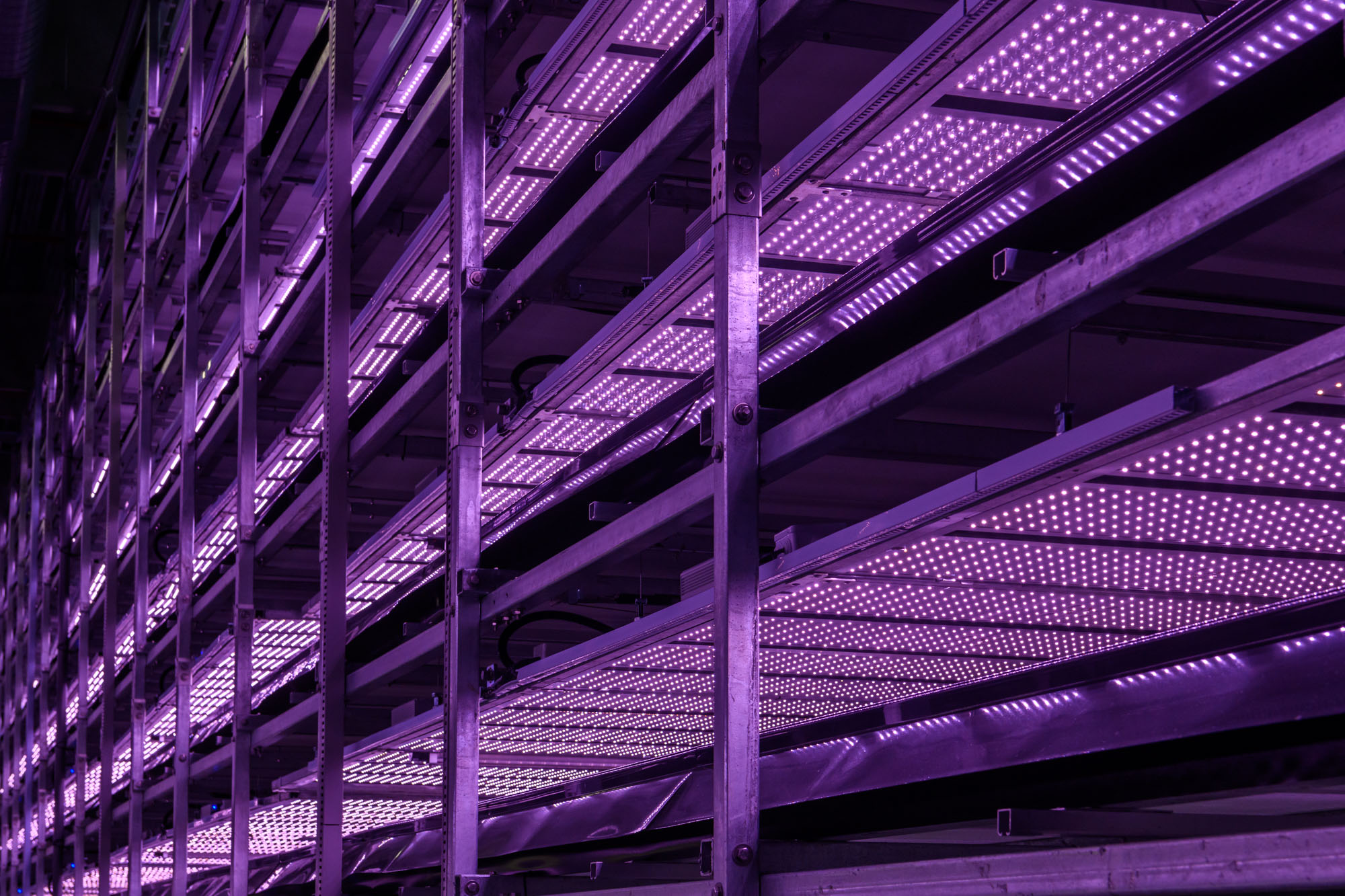 YesHealth Group vertical farming technology