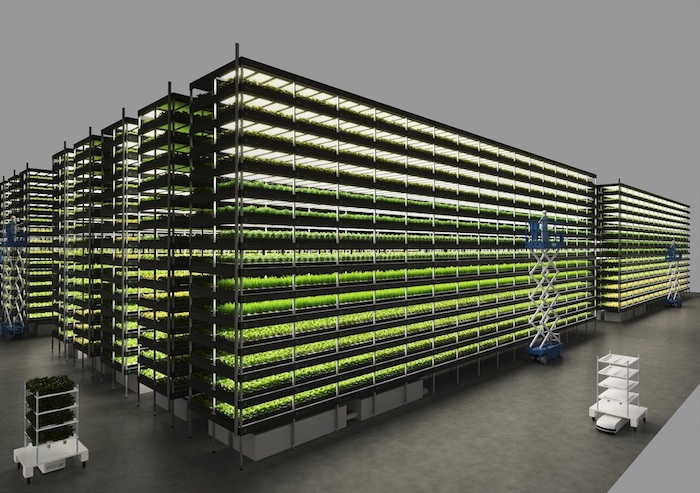 Tech Transfer | YesHealth Group | Vertical Farming Technology Partner