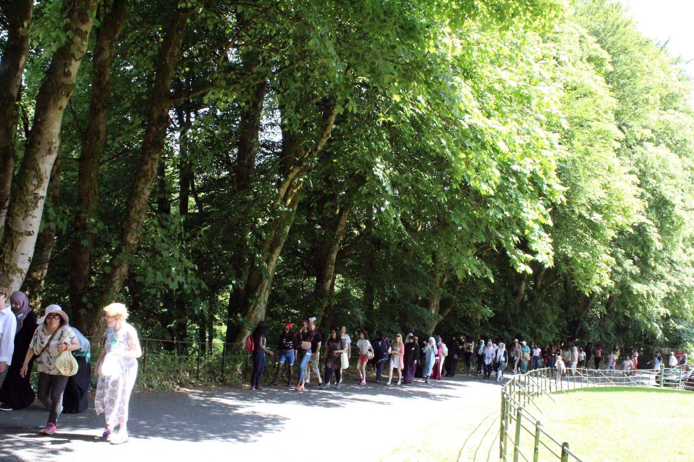 Walk & Create With Us - where community, art, nature & interculturalism meet