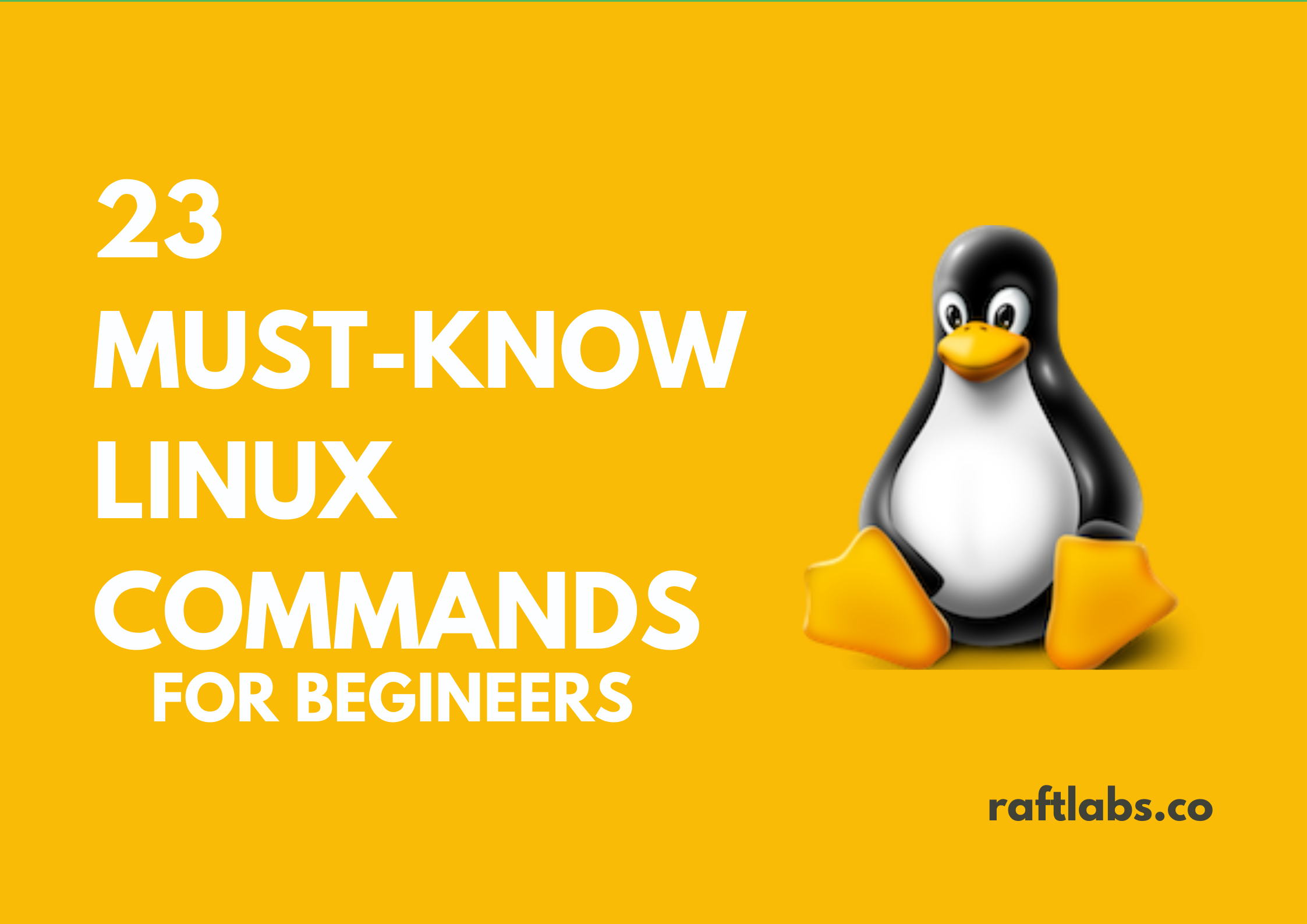 23 Must Know Linux Commands with Linux Logo - raftlabs.co