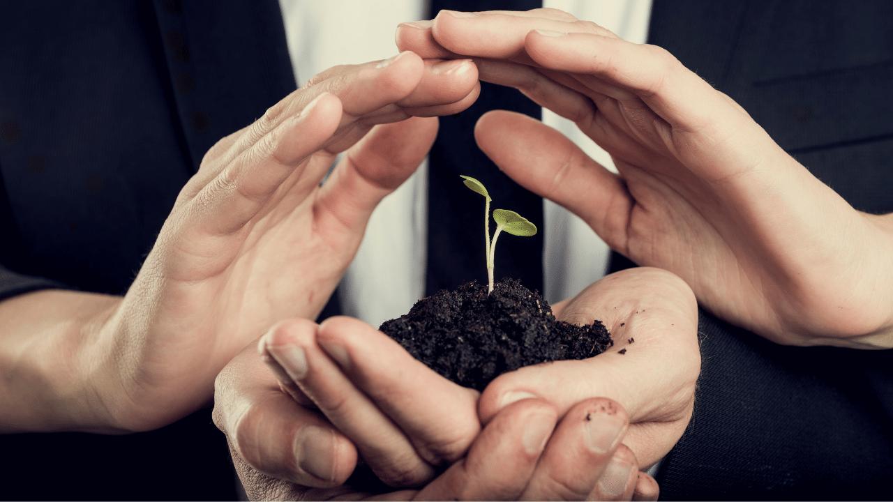 Ideias de responsabilidade social para a sua empresa
