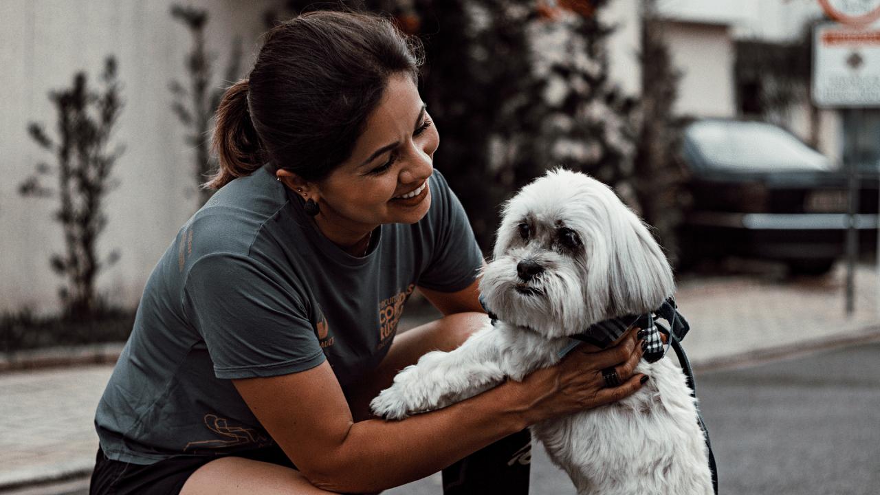 Conheça as vantagens de ter um comércio Pet Friendly