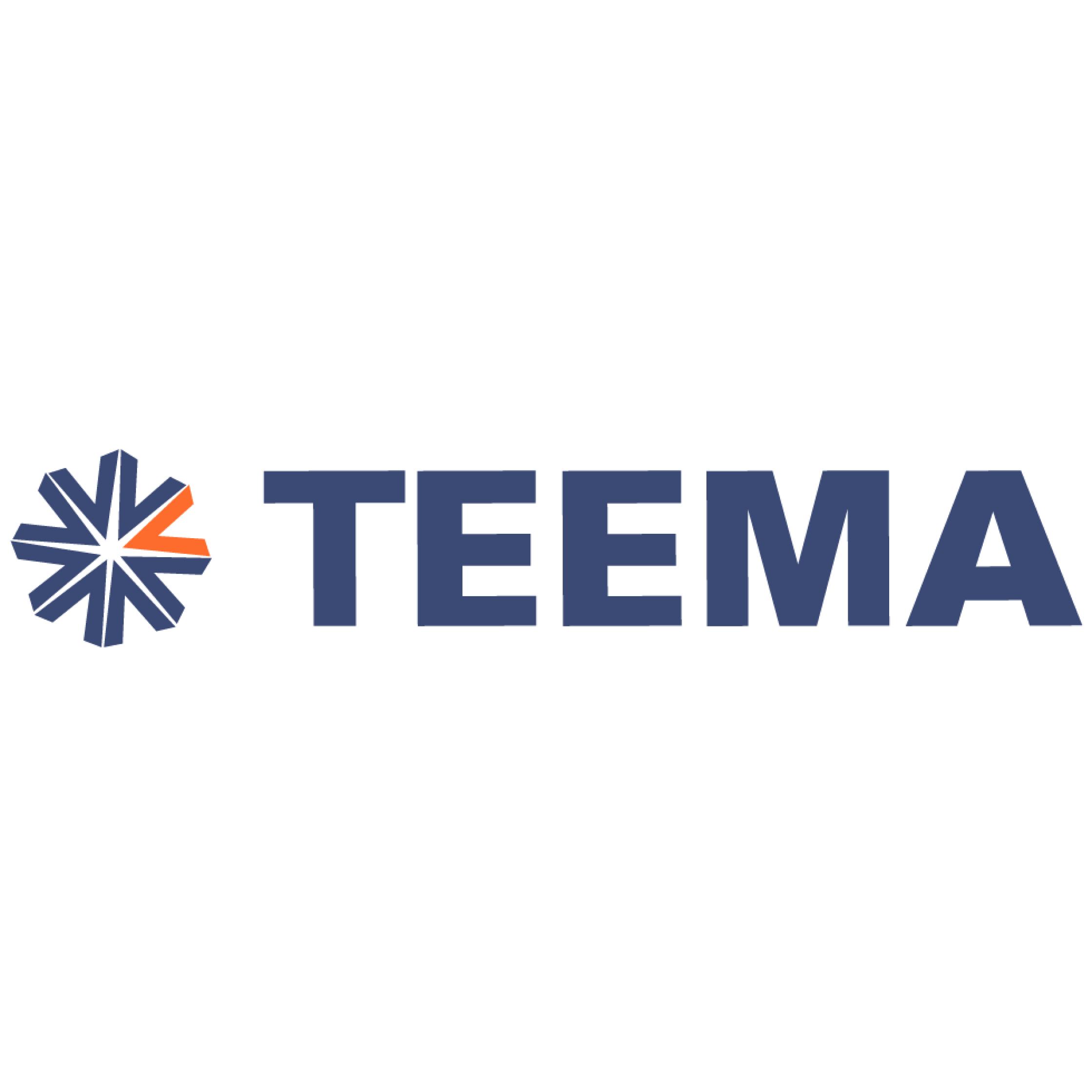 Teema logo