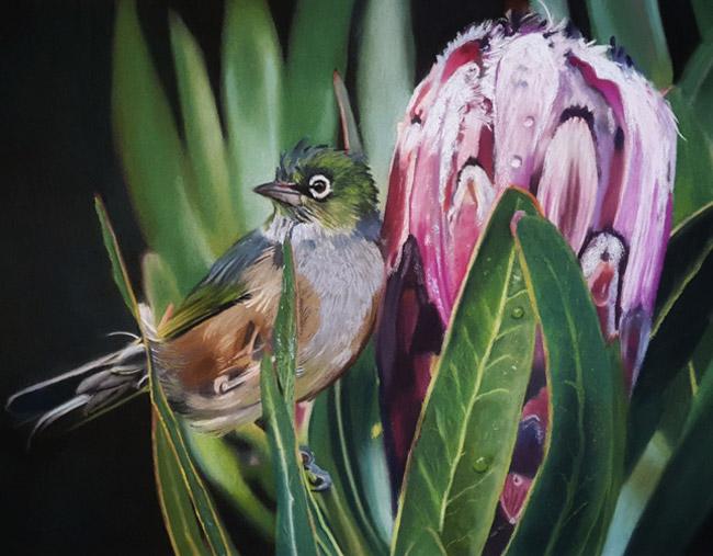 A wax eye bird on a peonie Karen Gourley Art