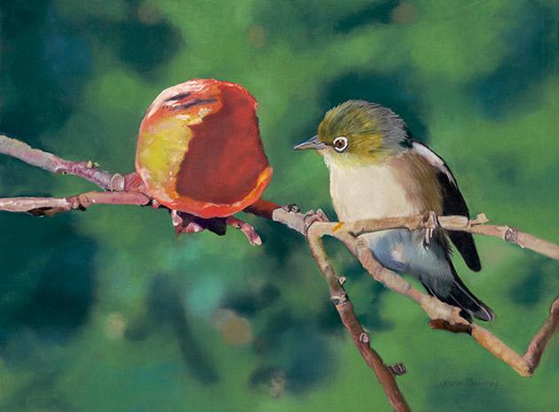 A wax eye bird eyeing up a juicy apple Karen Gourley Art