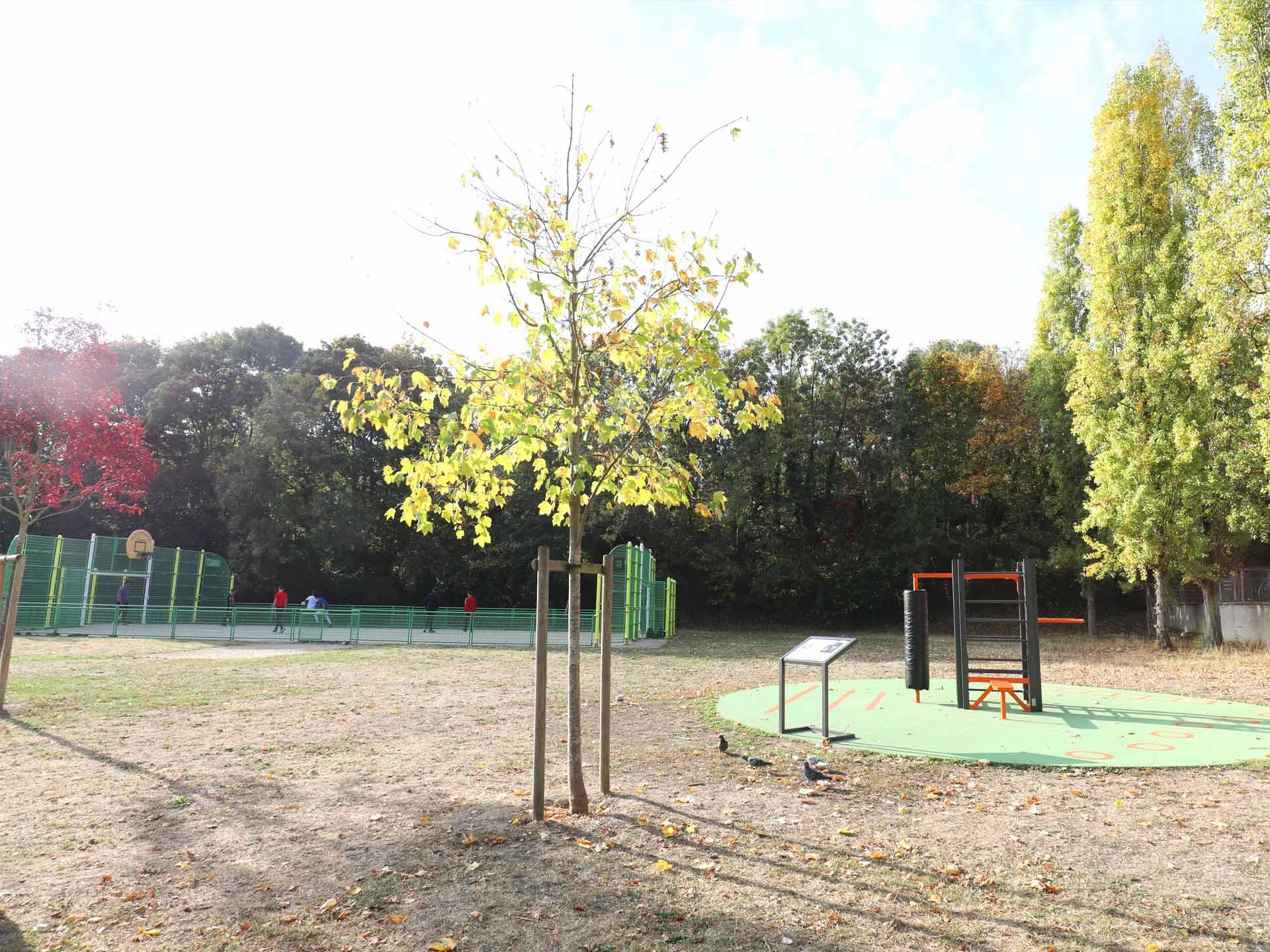 Photo de l'aire de fitness en accès libre à côté du city stade de Saint Germain en Laye