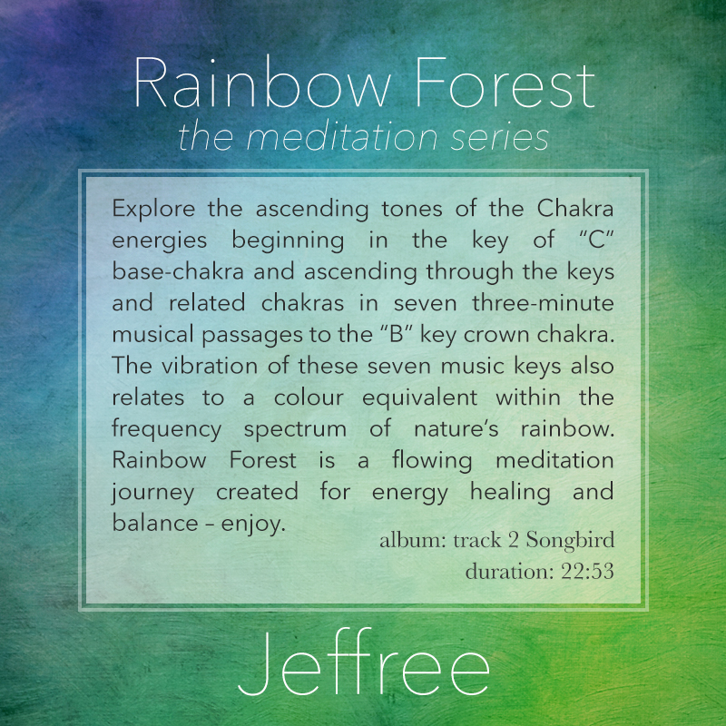 Rainbow Forest Meditation