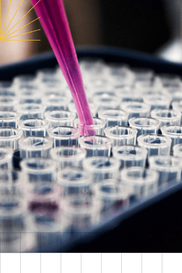 A closeup of a pipette filling a set of small beakers