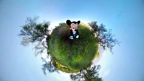 Disney: Happy Birthday Mickey