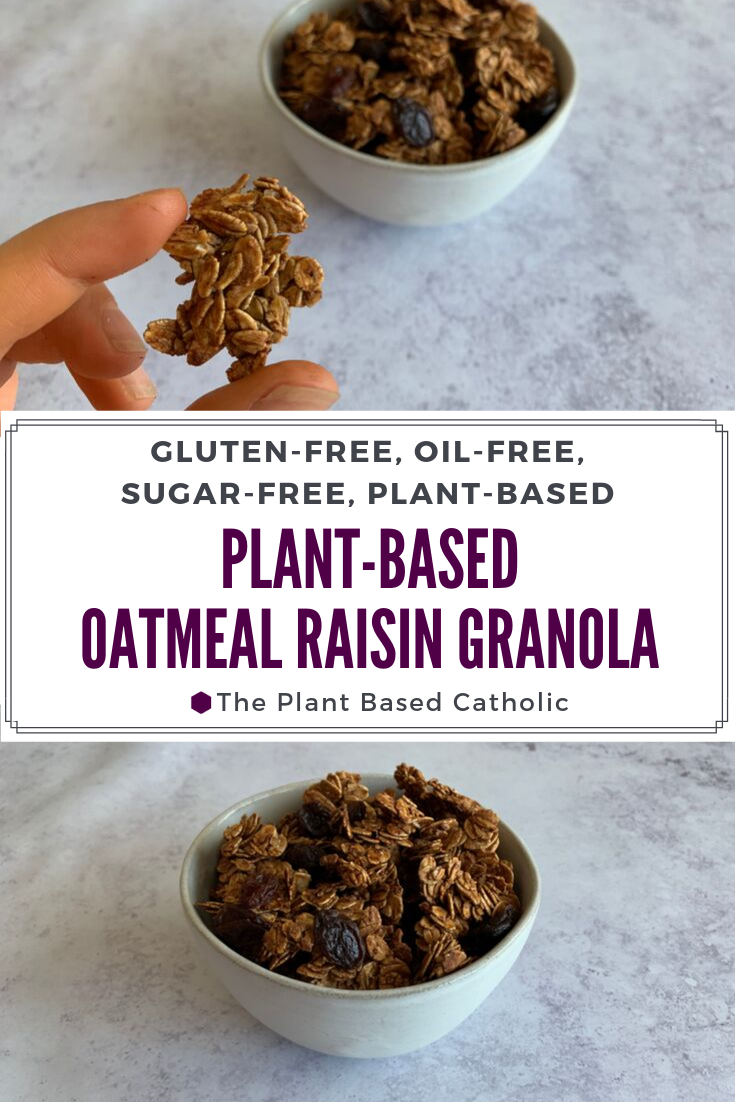 Plant-Based Oatmeal Raisin Granola