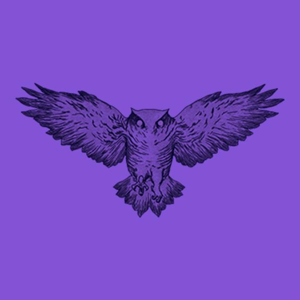 An owl illustration