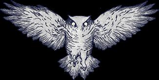Mirada's illustration of an owl.