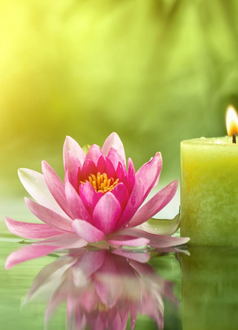 Lotus & Candle