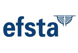 FORUM Family Office übernimmt 60% der efsta IT Services