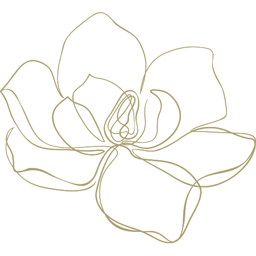 Lineart of a flower opening
