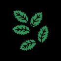 Adaptogens Icon