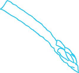 dooka-illustration-of-an-aspargus